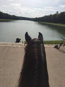 Ballade VIP à Versailles