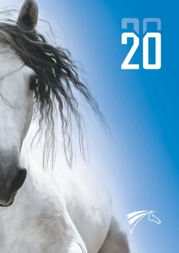 ffe_licence-2020-hd