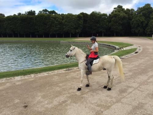 Balade à cheval dans un parc