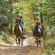 promenade équestre horseholidaysfrance