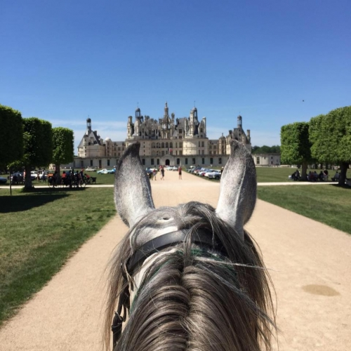 Loire valley : one week trail ride from castle to castle