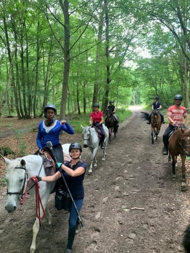 horse holidays - séjours équestre- emission de radio france bleu