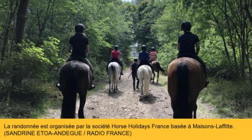 """En randonnée à cheval en Île-de-France : """"la liberté"""" après le confinement"""